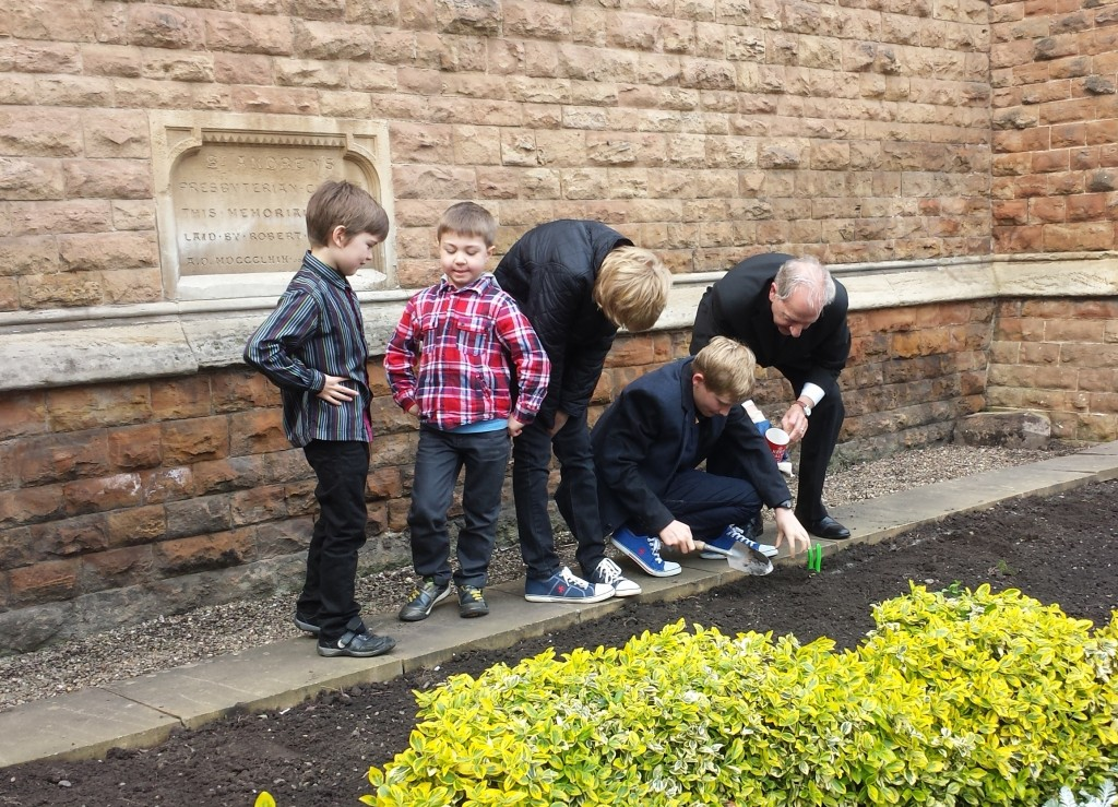 poppysowing2014